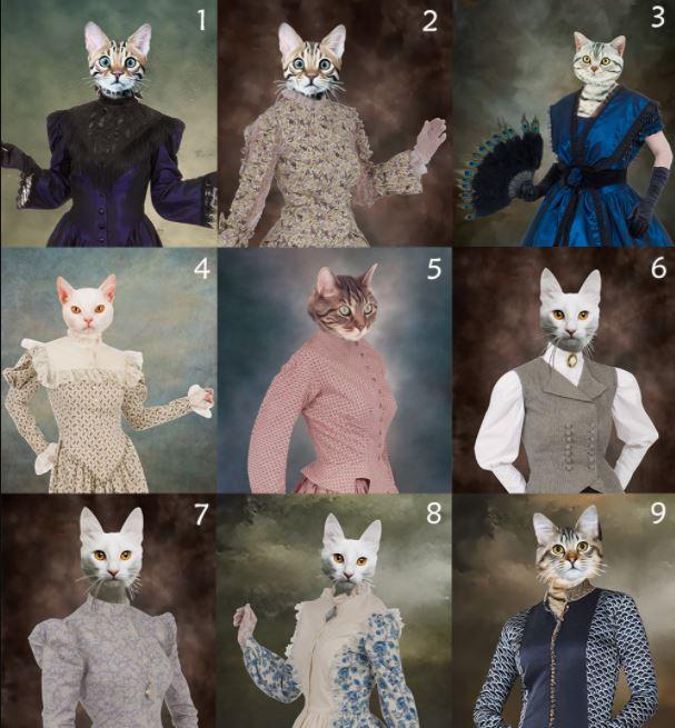 Photo Canvas Custom Cat 3 and Pet Custom 3